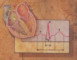 hjärtat 2
