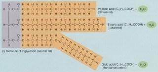 Simvastatin sänker nivåerna av triglycerider och LDL-kolesterol.